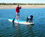 Lara Stand Up Paddleboards With Her Doggie Snorkel